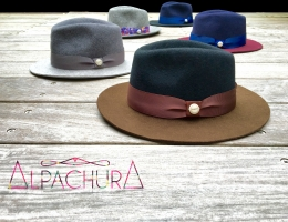 alpachura pour violette sauvage