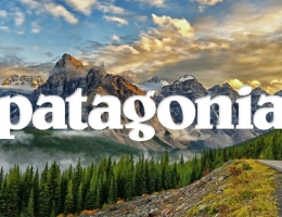 logo patagonia
